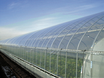 20120619mitsubishij - 三菱樹脂/18億円投じ、農業ハウス用高機能フィルムを中国で生産