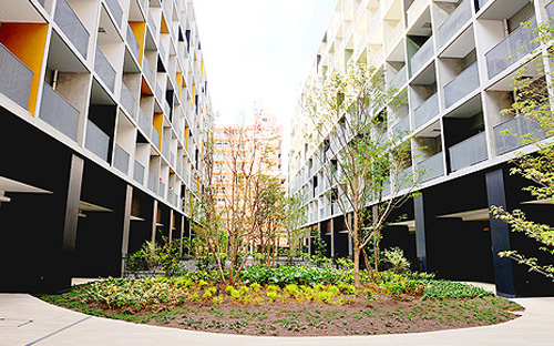 不動産事業 企業寮をシェアする発想で開発した月島荘。業種や職種、国籍、年代の異なる多様な人々が集まる