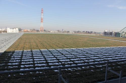 20150204kokubu6 500x333 - 国分/板橋区に1万坪の3温度帯物流センター、開設