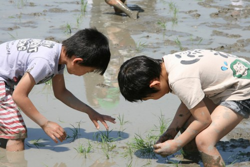 20150511sghd1 500x333 - SGホールディングス/滋賀県守山市でグループ自然体験学習