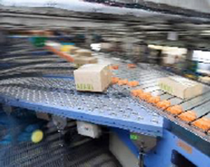 20150618askul2 - ネスレ日本/アスクルに直販ビジネスの物流を委託