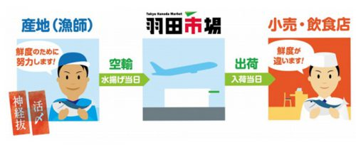 羽田市場「超速鮮魚」のイメージ