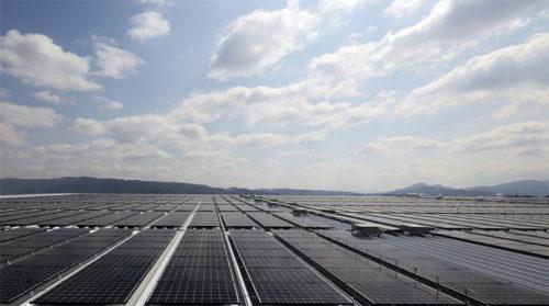 屋上部の太陽光パネル