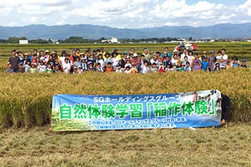 稲刈り体験参加者