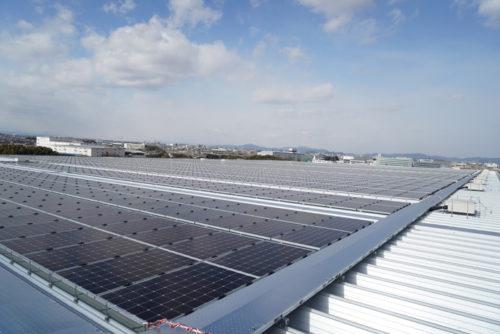 屋上に設置された太陽光パネル、すべて売電の予定