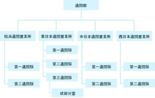 新通関組織図