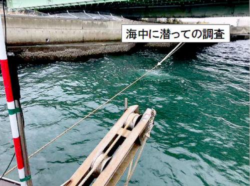 潜水夫による海中調査(関空連絡橋南側)