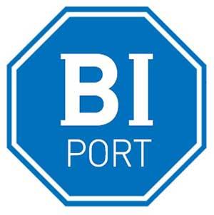 BIポート