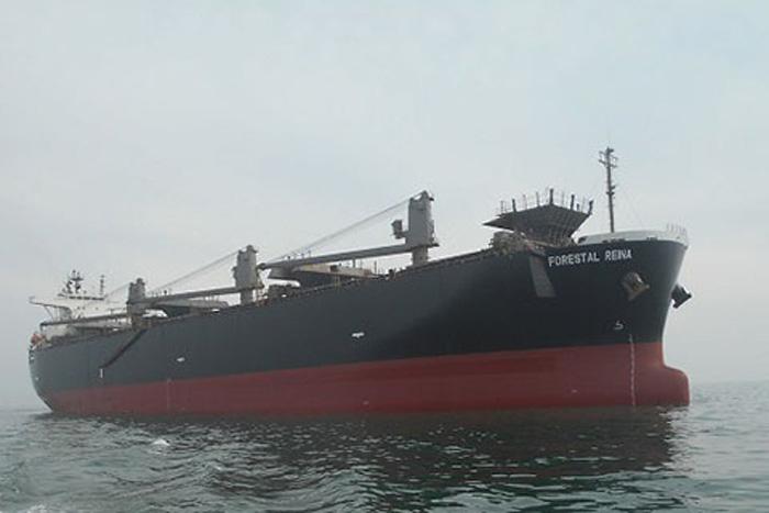 チップ船「FORESTAL REINA」(船舶管理:八馬汽船)