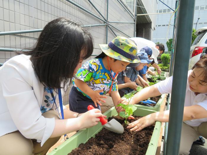 20190702sgg1 - SGムービング/事業所内保育園で苗の植え付けイベントを実施