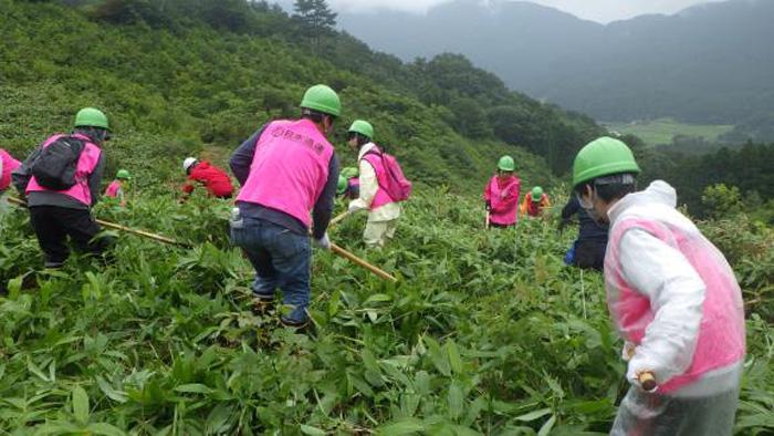 20190719nittsu2 - 日通/鳥取県日南町「日通の森」で、夏の森林育成活動を実施