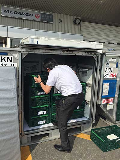 20190828nogyo4 - 農業総合研究所/旭川空港に農産物の集荷拠点開設