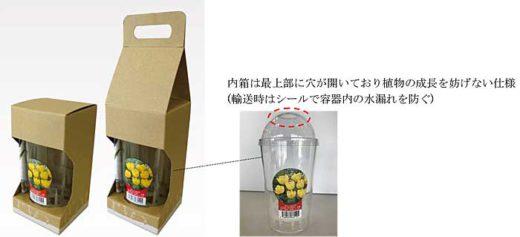球根水耕栽培キット商品の小型化二形態パッケージ