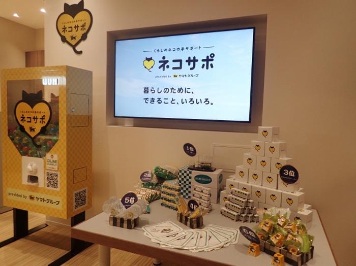 ネコサポステーション テラスモール松戸店 イベントスペースのデジタルサイネージ
