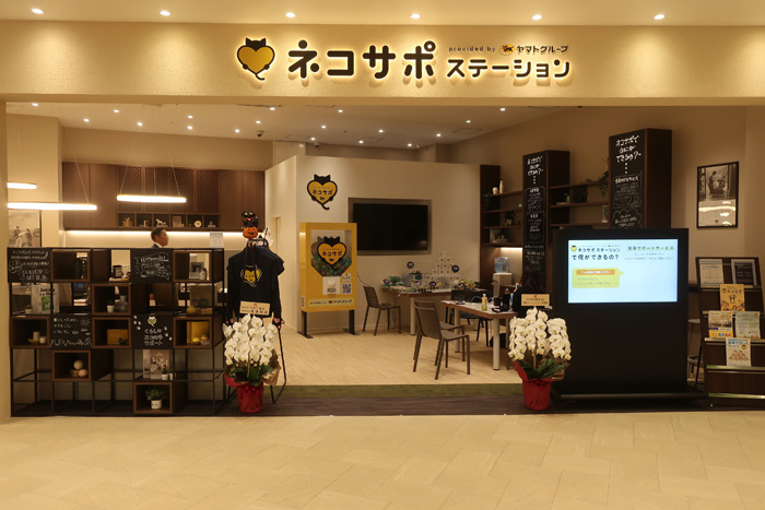 ネコサポステーション テラスモール松戸店  10月23日の様子