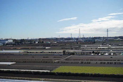 20200129tokyu4 520x347 - 東急不動産/投資額200億円、埼玉県三芳町にアスクル専用施設完成