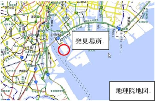 20201001hiari1 - ヒアリ/東京港青海ふ頭で500匹発見