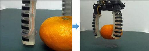 20201009dnp 520x180 - DNP/果物・野菜のピッキング可能な接触センサーユニット開発