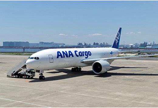 20210205ana1 520x358 - ANA/貨物便輸送事業計画を策定、貨物専用機を成田空港に集約