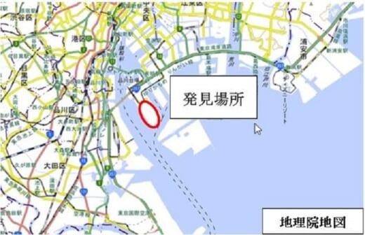 20210818hiari1 520x336 - ヒアリ/東京港青海ふ頭で働きアリ200匹確認